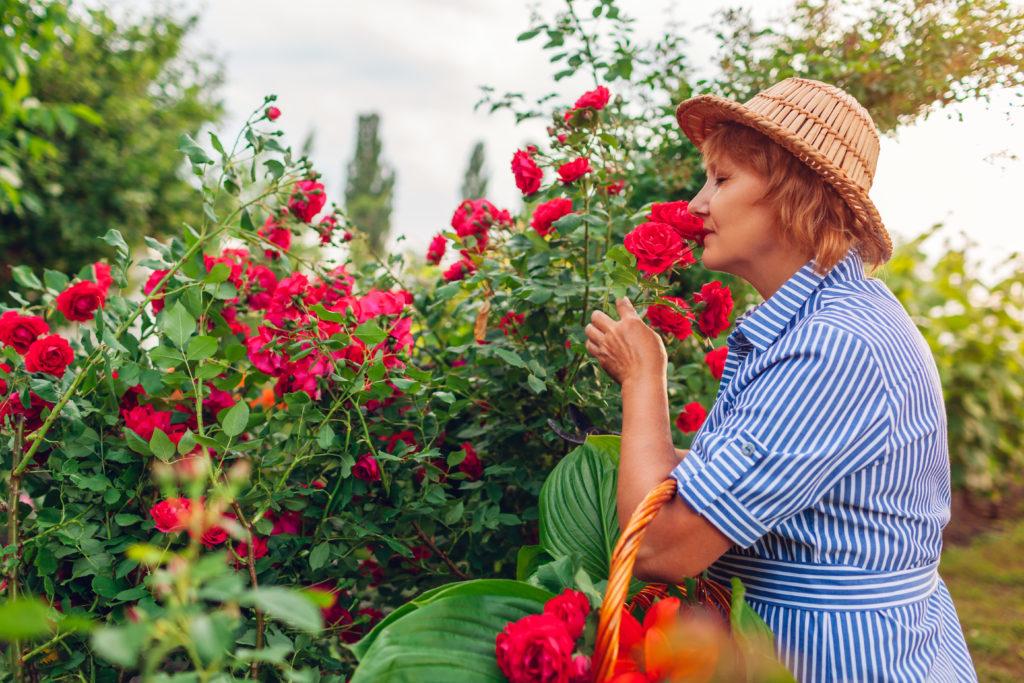 joint pain when gardening